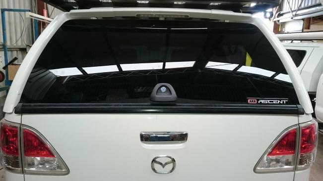 Canopy Rear Window Replacement